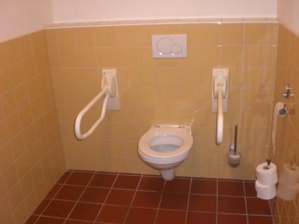 mindervalide toilet  Oltvoort